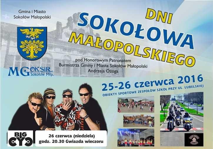 Dni Sokołowa 2016 – występy uczniów NSM I st.