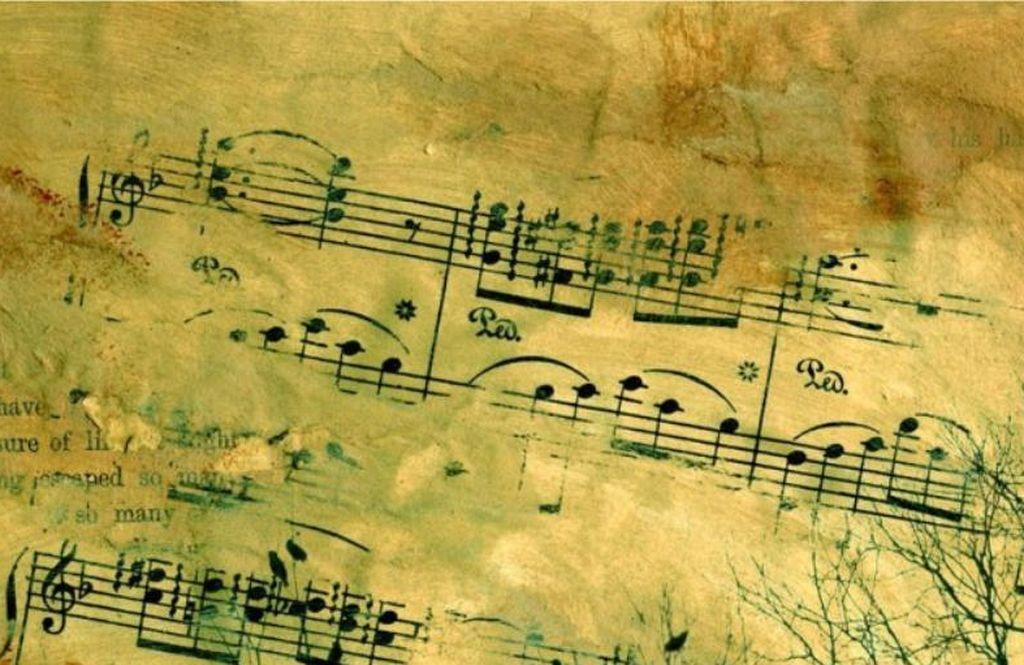 Koncert symfoniczny w Żołyni