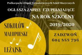 Zapisy uzupełniające do szkół muzycznych w Sokołowie Małopolskim i w Leżajsku