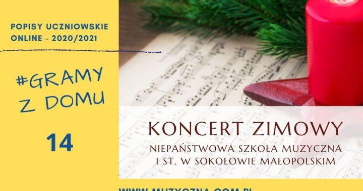 Koncert Zimowy uczniów Niepaństwowej Szkoły Muzycznej I st. w Sokołowie Małopolskim